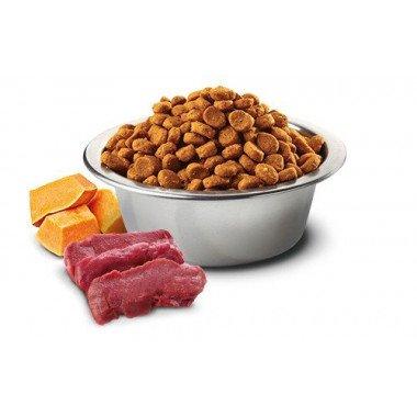 N&D grain free potiron cerf (chat)