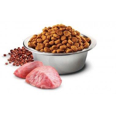 N&D grain free quinoa agneau - digestion (chat)