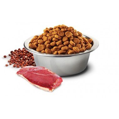 N&D grain free quinoa canard - urinary (chat)