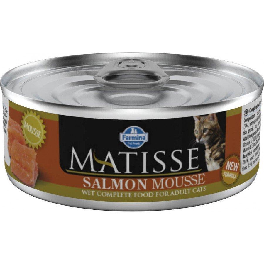 Matisse mousse au saumon (chat)