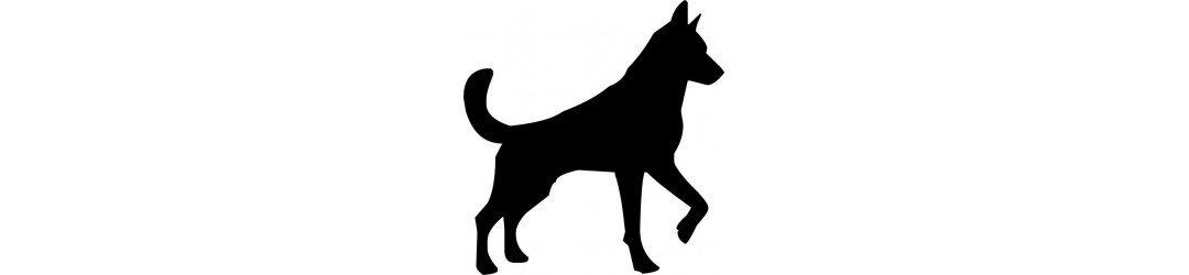 Croquementbon - Promotions chien